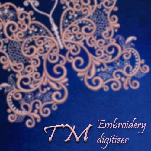 TM digitizer
