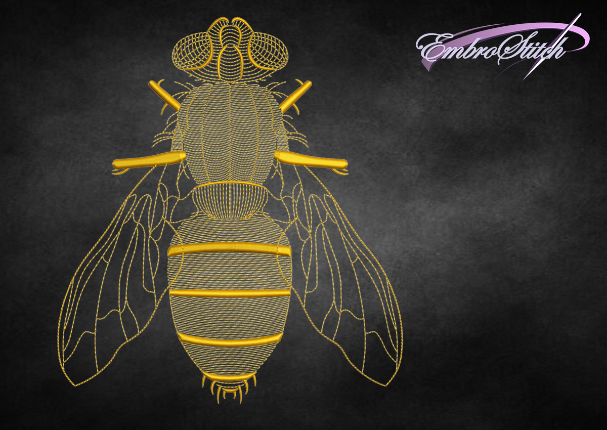 The embroidery design Creative outline fly